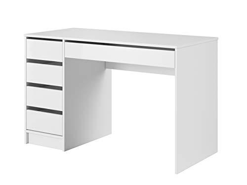 Mirjan24 Schreibtisch Ada, 5 Universale...